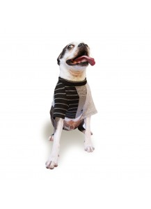 "Knit Dog Raglan T-Shirt ""Urban Stripe Vol. 2"""